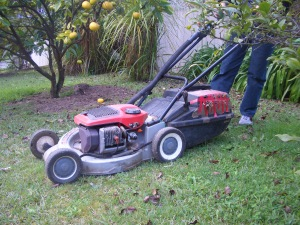 one of my favourite recordings, Dad's Vecta mower. Here it is in real life - all taped together! The 'vintage' of this lawn mower made a great sound.